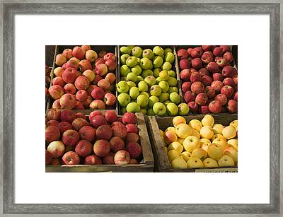 Apple Harvest Framed Print by Garry Gay