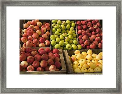 Apple Harvest Framed Print by Garry Gay