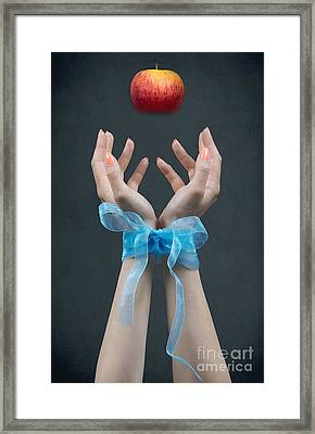 Apple In Your Hands Framed Print by Svetlana Sewell