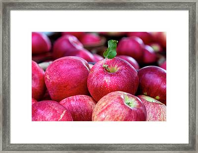 Apple Love Framed Print by Teri Virbickis