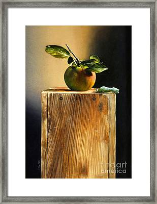 Apple On A Box Framed Print by Larry Preston
