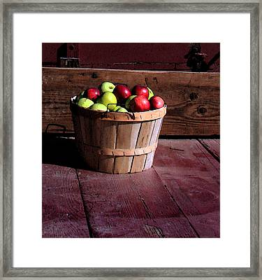 Apple Pickens Framed Print