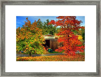 Apple Shed Framed Print by Randy Wehner Photography