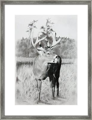 Apple Snack Framed Print by Stan White
