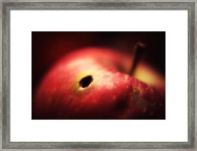 Apple Framed Print by Svetlana Peric