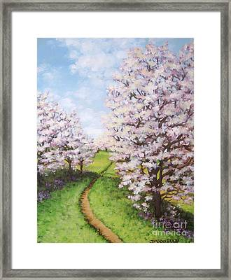 Apple Trees Along The Path Framed Print