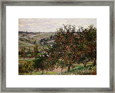 Apple Trees Near Vetheuil Framed Print by Claude Monet