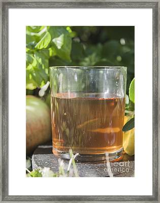 Apple Vinegar Framed Print by D R