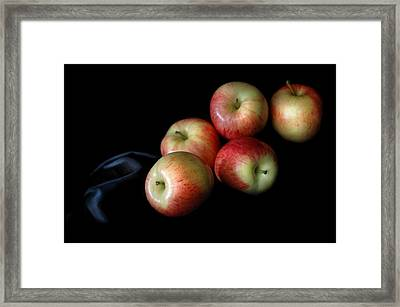 Appleanche Framed Print by Dan Holm