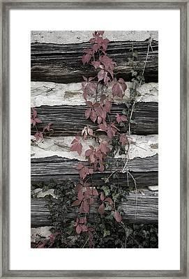 Appleberry Mountain 2 Framed Print