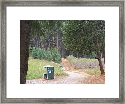 Apples For Sale Framed Print by Dawn Marie Black