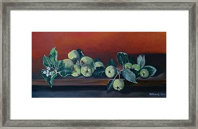 Apples From The Farm Framed Print by Bertica Garcia-Dubus