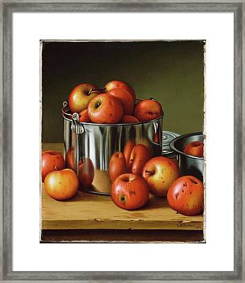 Apples In A Tin Pail Framed Print by Levi Wells