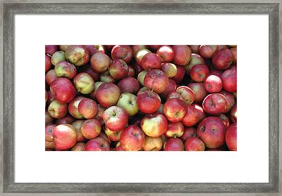 Apples In The Fall Framed Print by Andrea Kilbane