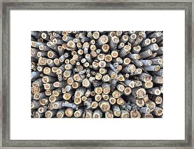 Applewood Framed Print