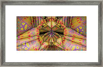 Applique Framed Print by Ron Bissett