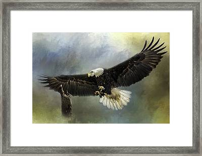 Approaching His Perch Framed Print