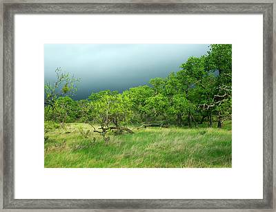 Approaching Storm Framed Print by Bill Morgenstern