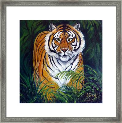Approaching Tiger Framed Print by Janet Silkoff