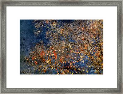 Approaching Winter Framed Print by Russ Brown