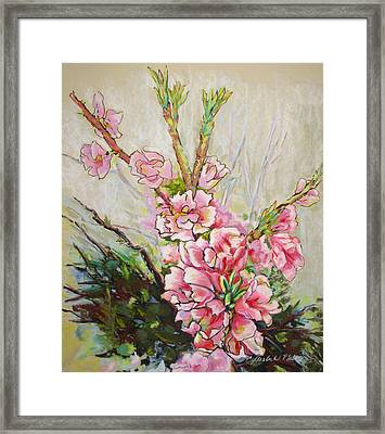Apricot Energy Framed Print by Carole Haslock