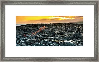 Apricot Flow Framed Print by Sean Davey
