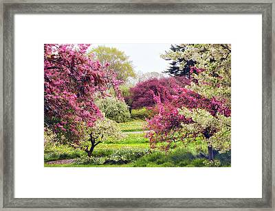 April Afterglow Framed Print by Jessica Jenney