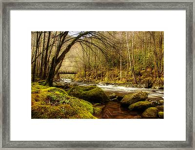 April Along The Stream Framed Print by Mike Eingle