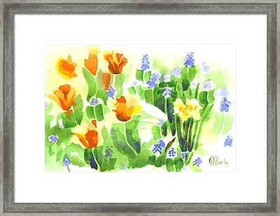 April Flowers 2 Framed Print
