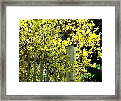 April Gold Framed Print by Joyce Kimble Smith