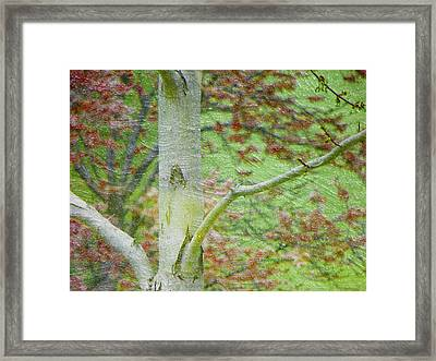 April Love Framed Print