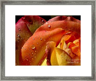 Framed Print featuring the photograph April Showers by Marie Neder