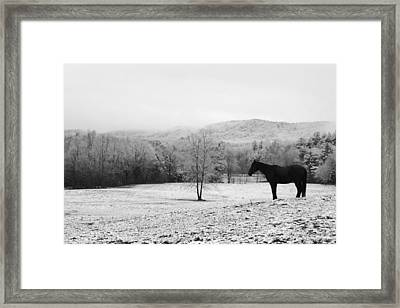 April Snow Framed Print by Robert Clayton