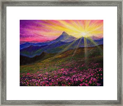 April Sunset Framed Print by C Steele
