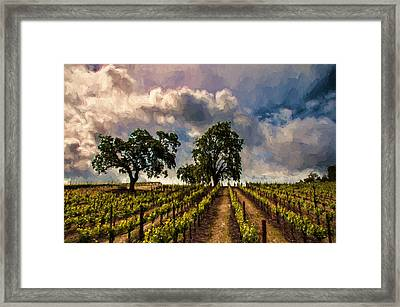 April Vines Framed Print by John K Woodruff