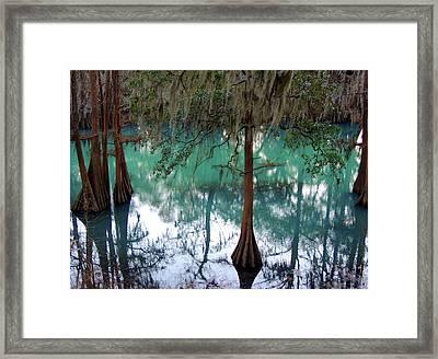 Aqua Beauty Framed Print by Kim Pate