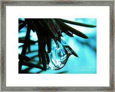 Aqua Framed Print by Misha Bean