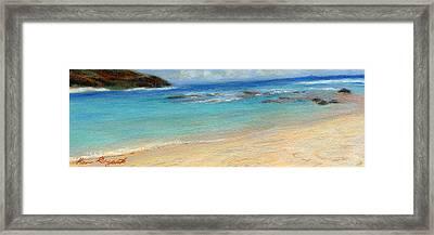 Aqua Moloa'a Framed Print by Kenneth Grzesik
