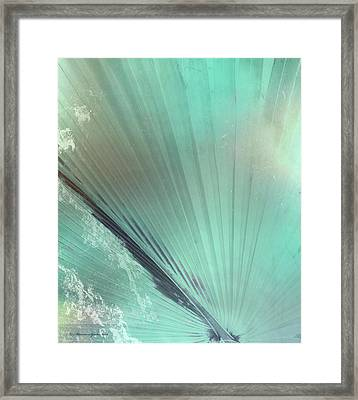 Aqua Palm Frond Lh Framed Print by Marvin Spates