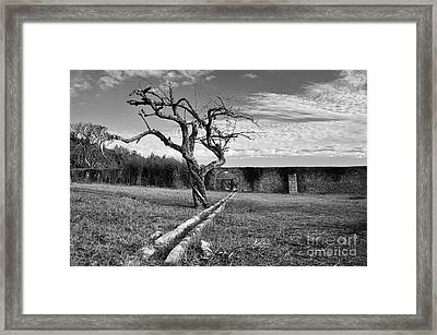 Aquaduct Framed Print by Floyd Menezes