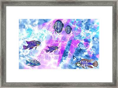 Aquarium 2 Framed Print