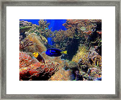 Aquarium Adventures In Abstract Framed Print