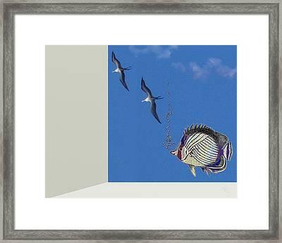 Aquarium Framed Print by Tony Rodriguez