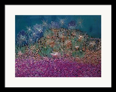 Fish On A Reef Paintings Framed Prints