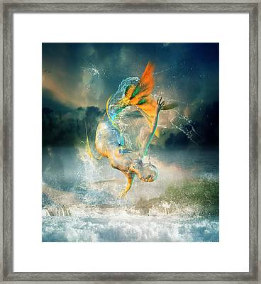 Aquatica Framed Print by Mary Hood