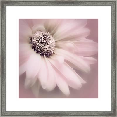 Framed Print featuring the photograph Arabesque In Ballet Pink by Darlene Kwiatkowski