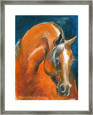 Arabian 1 Framed Print by Mary Armstrong