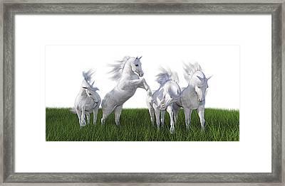 Arabian Fields Framed Print by Betsy Knapp