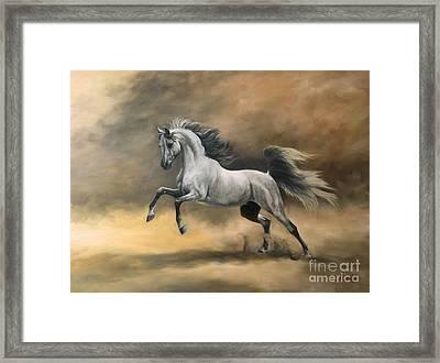 Arabian Framed Print by Jeanne Newton Schoborg