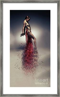 Arabian Nights Framed Print by Nichola Denny